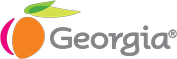 georgia-logo-gray